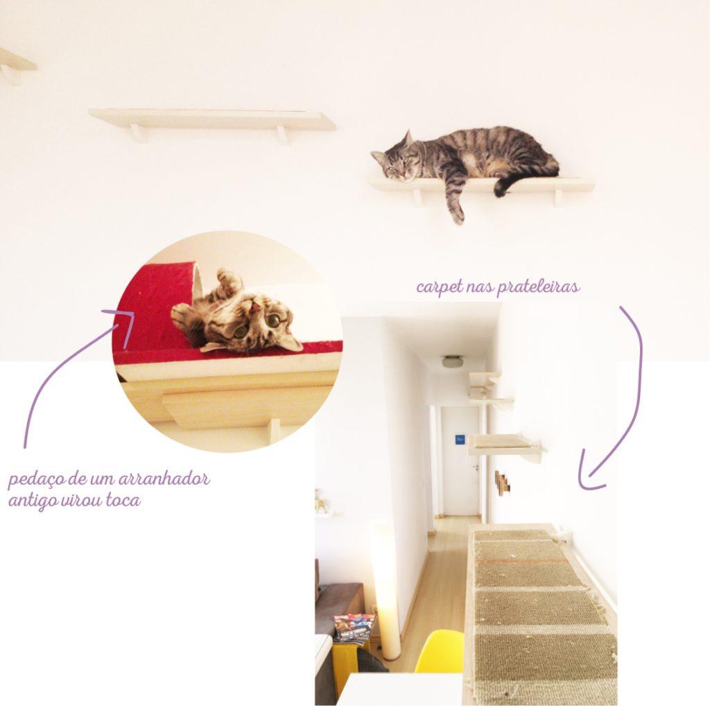 gatos_prateleira_naorepete