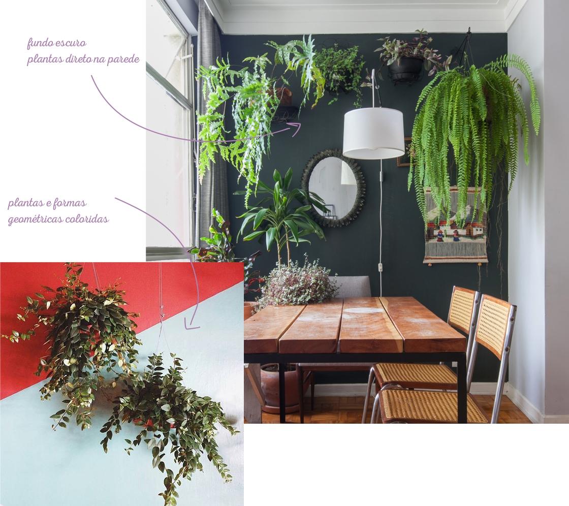 plantas_parede_naorepete